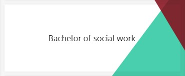 Bachelor of social work