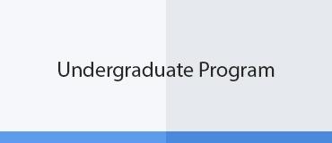 undergraduate program